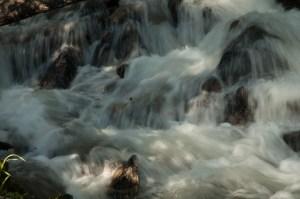 Hell-Roaring-Creek-1024x680