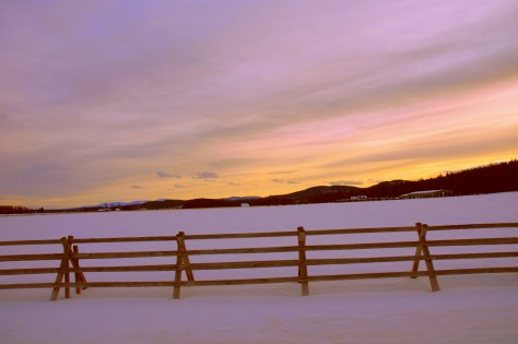 Fence, Snow, Pasture, Sunset