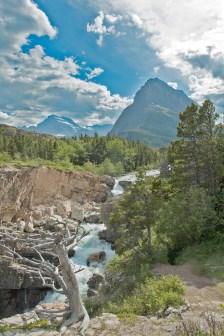 Stream, Mountain, Dead Tree, Glacier National Park, Many Glacier