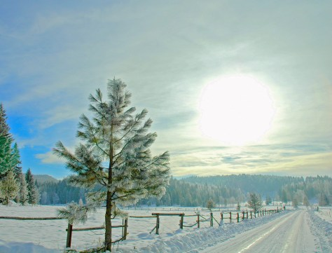 beaver-lake-road-snow-winter