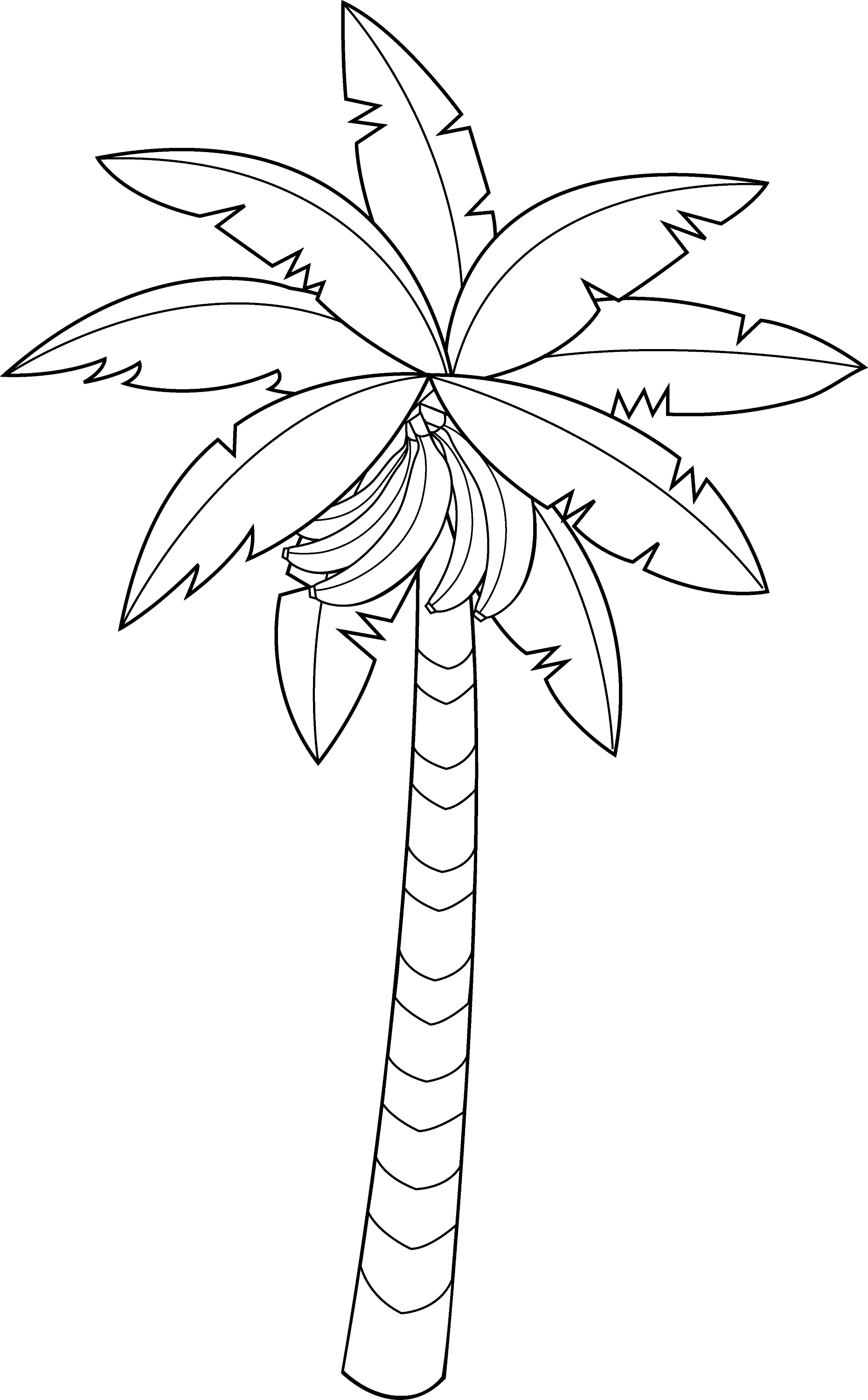 Pin Coconut Tree Coloring Page Pages on Pinterest
