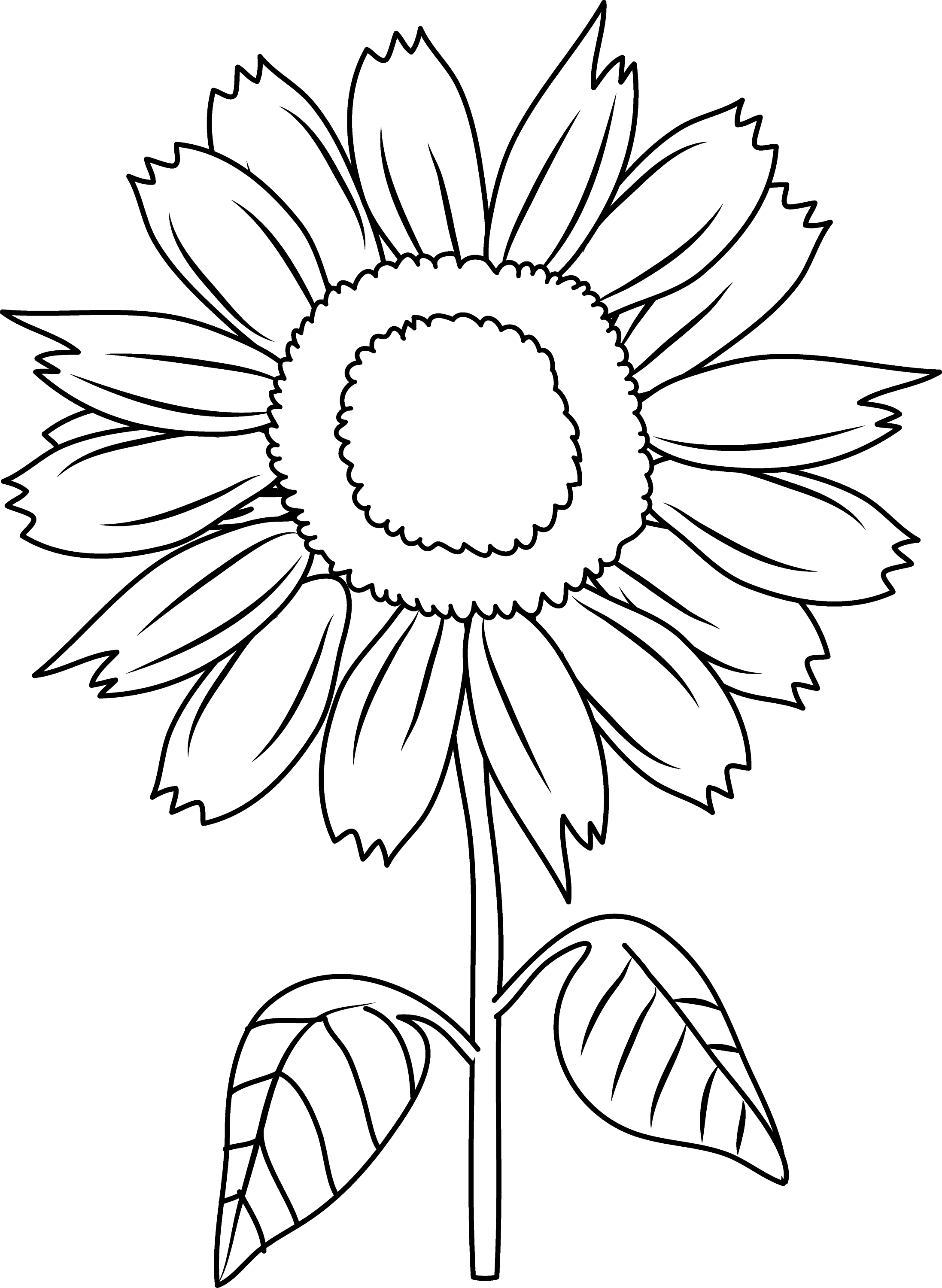 Pretty Sunflower Coloring Page