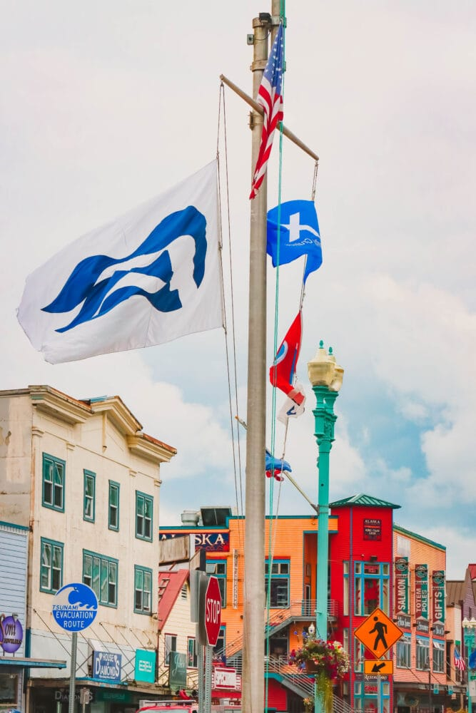 picture of a Princess cruise ship flag on a flagpole in Ketchikan Alaska