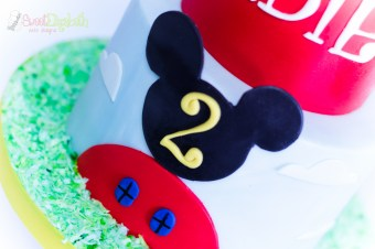 Mickey Mouse Clubhouse Detail Shot