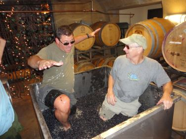 Mike Bottoms and Sean Healy footstomping Sangiovese 2013