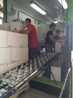 Dumping glass, filling cases on the bottling line.
