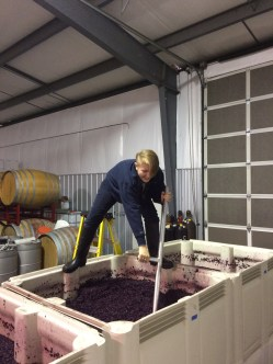 Syrah punch downs as demonstrated by Marlee, step 3.