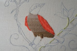 Close up of my mistle thrush.