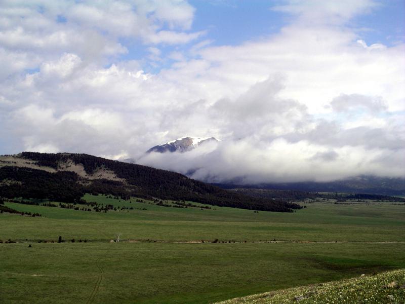 Gallery Sweet Grass Ranch
