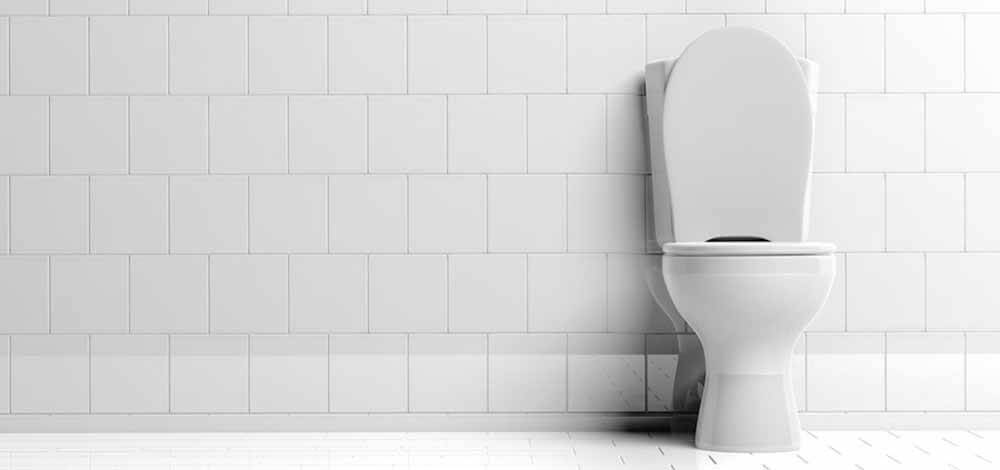 The Best Flushing Toilet Reviews In 2019