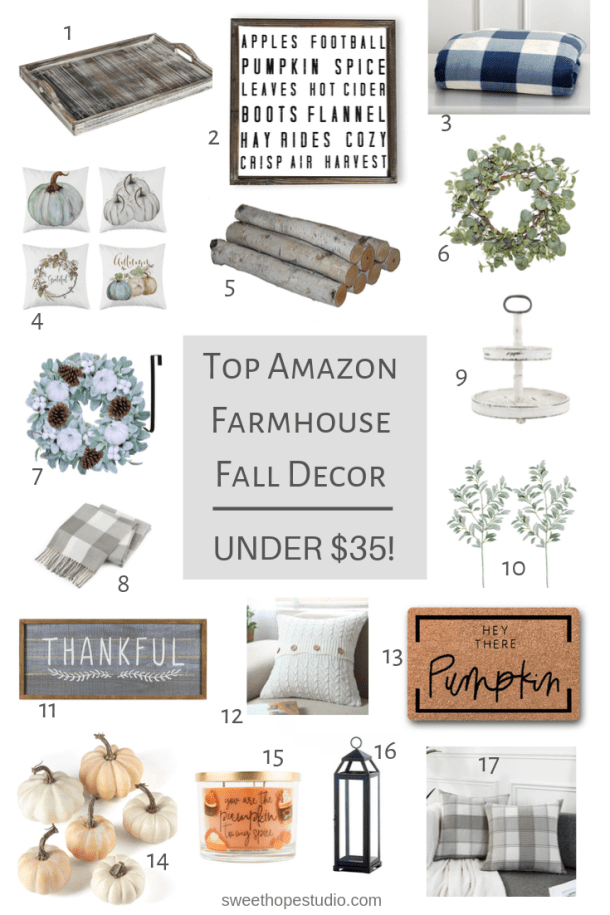 Amazon Farmhouse Fall Decor