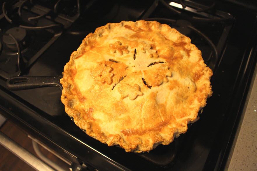 Amazing Harvest Chicken Apple Fall Pie