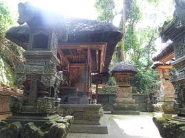 Temple du singe