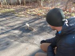 Mon homme et sa passion pour les écureuils