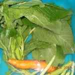 Steamed Callaloo wash your veg