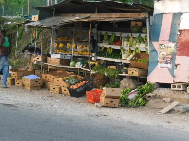 Jamaican Fruits and Vegetables