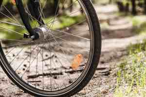 One Dead in Bicycle Accident on Highway 6 and Chalfant Loop Road [Bishop, CA]