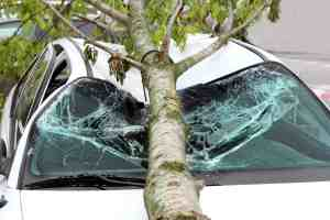 SAN LUIS OBISPO, CA - Young Man Killed in Crash on Highway 1 at Stenner Creek Road