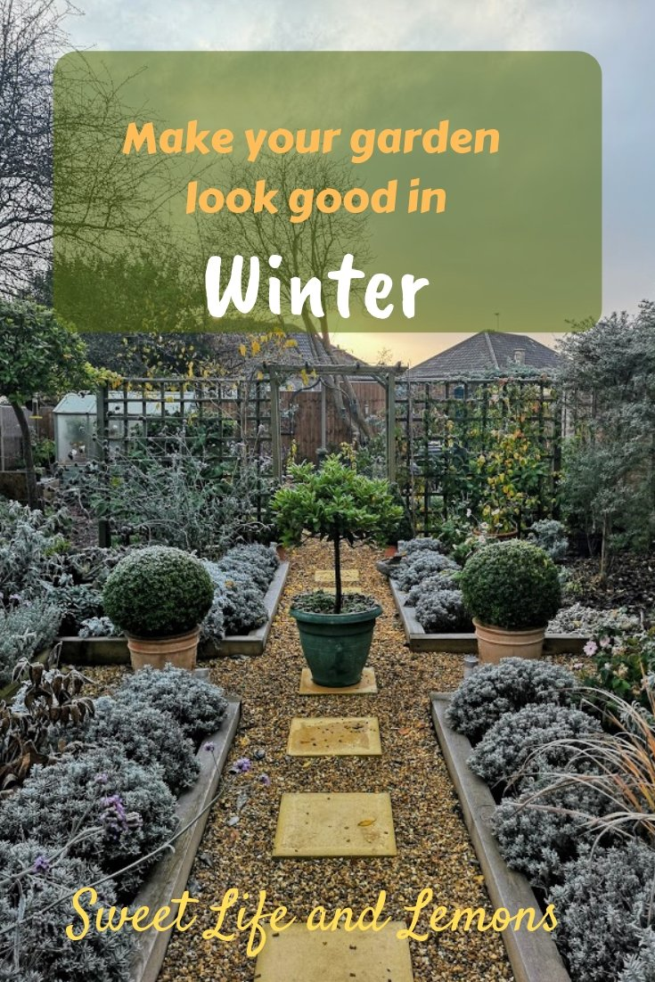 Make Your Garden Look Good In Winter Sweet Life And Lemons
