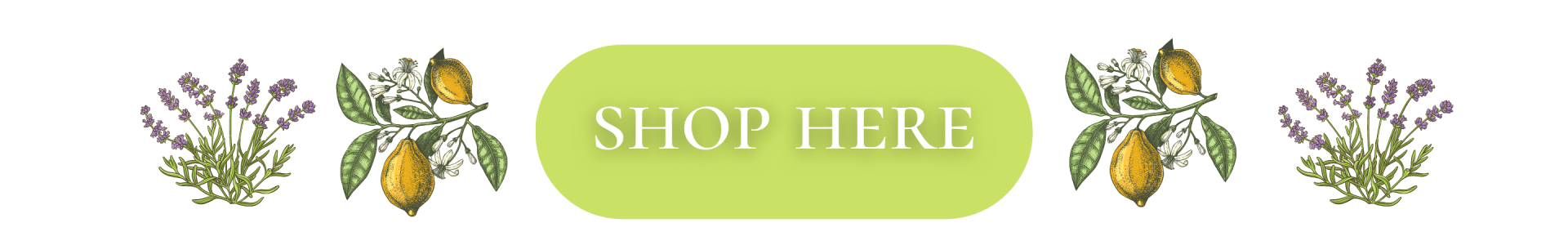 shop here (1)