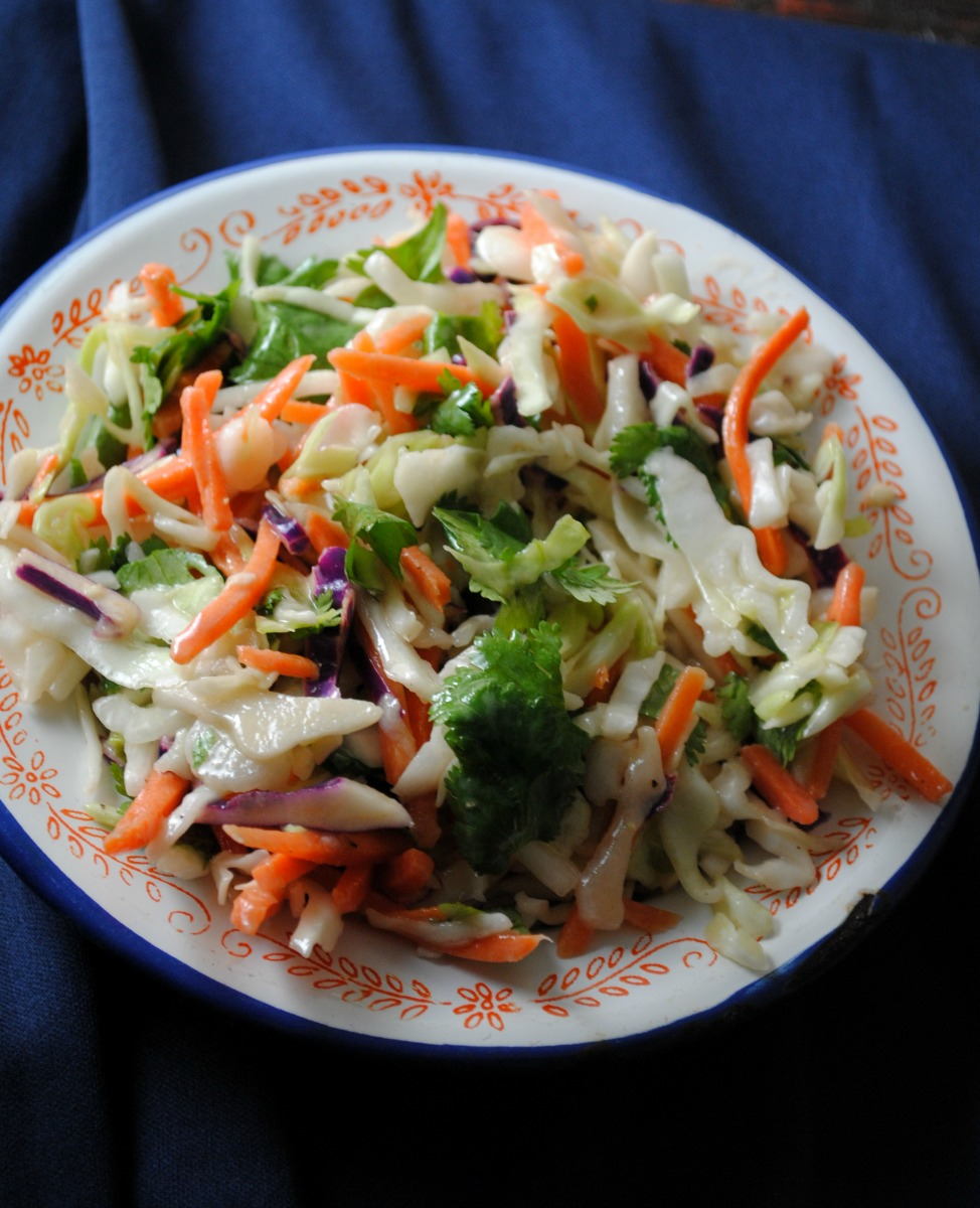 coleslaw-vianneyrodriguez