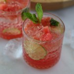 Watermelon Gin and Tonic