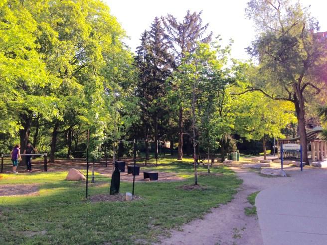 Cedarvale Ravine in Toronto's St Clair West neighborhood