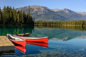 Finalist: Picture Perfect Lac Beauvert, Jasper