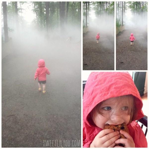 Rainy Foggy day at Edaville USA Dinoland