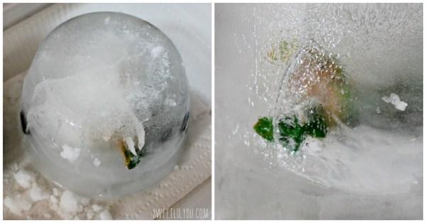 Dinosaur in ice activity