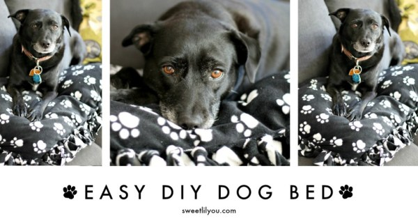 Easy DIY Dpg Bed Facebook
