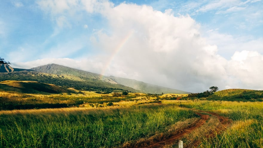 Maui Views
