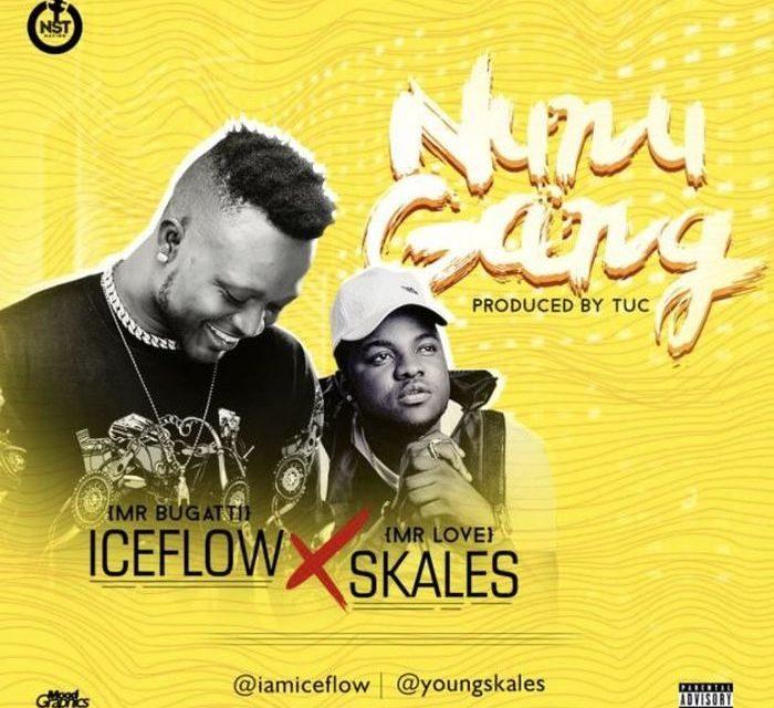 [Music] Iceflow Ft. Skales – Nunu Gang