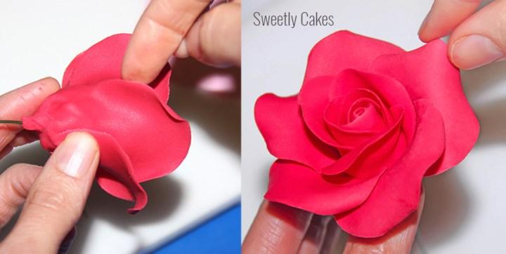 tuto rose