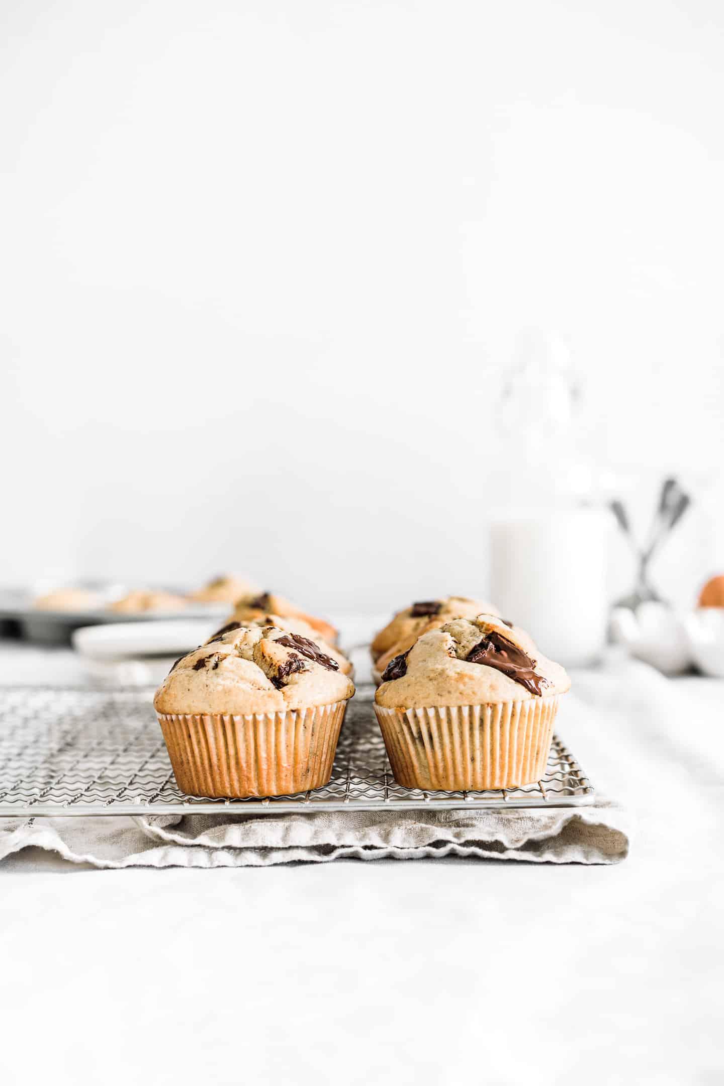 Homemade chocolate chip muffins recipe