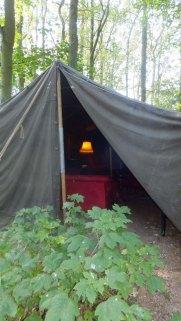 A peak in the tent