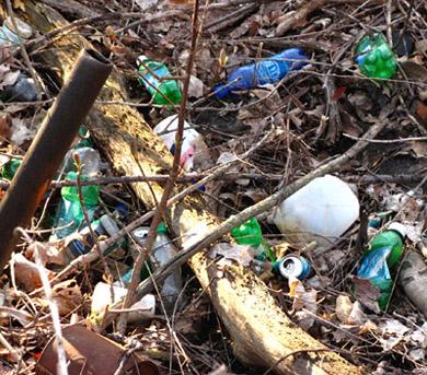 sweetmarimari-litter-on-the-banks