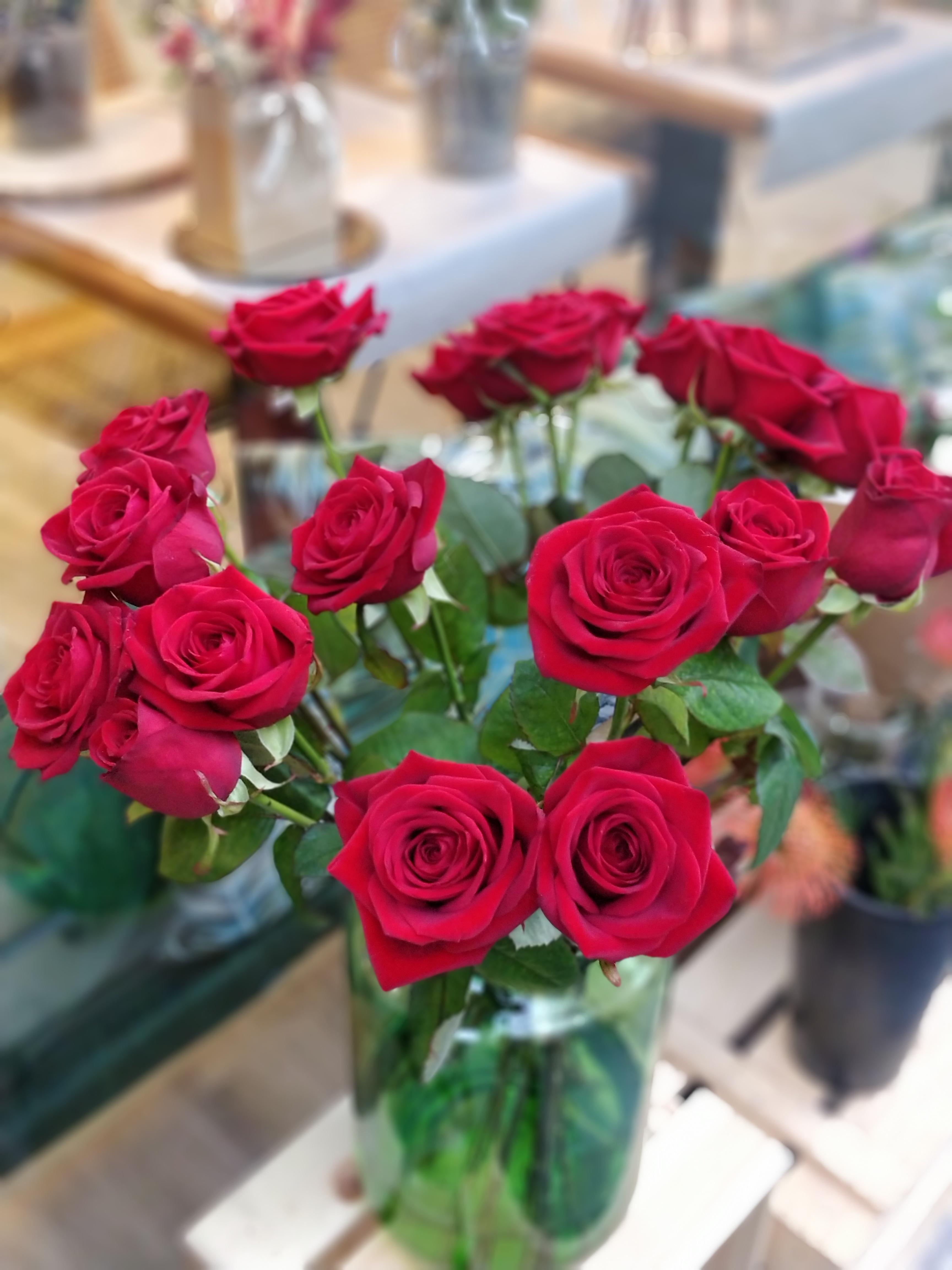 rosa roja red naomi