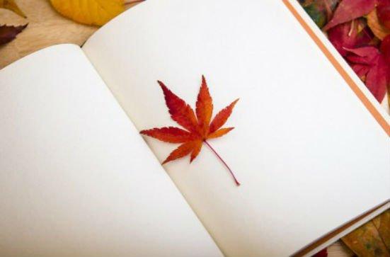 5 dingen die ik leuk aan herfst vind!
