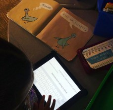 Using Seesaw Learning in primary grades