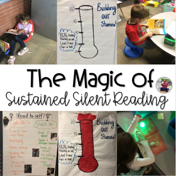 Sustained Silent Reading Blog Post
