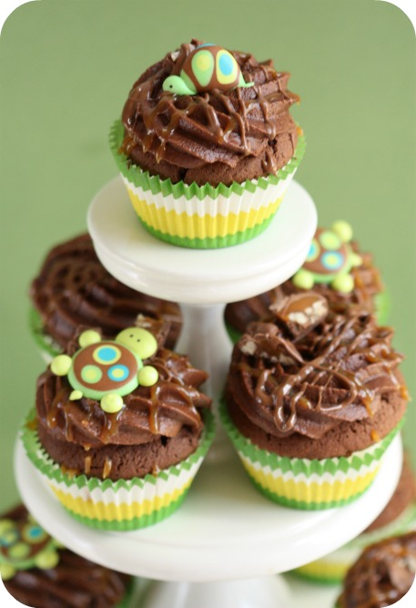 Gardening Guru Hibiscus Cupcakes