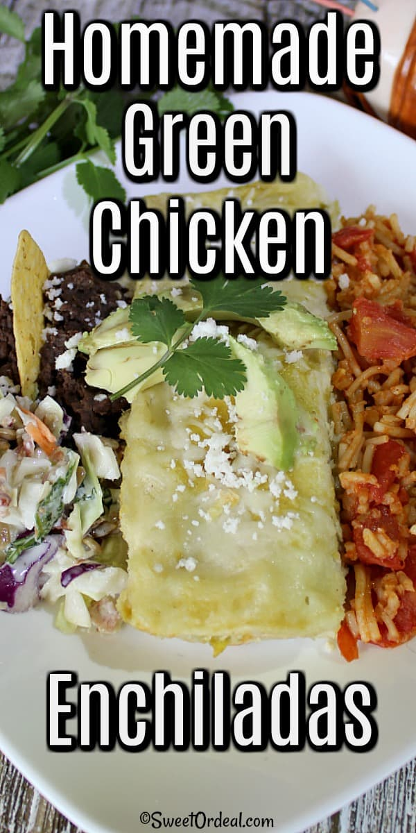 Enchilada surrounded by rice and beans.