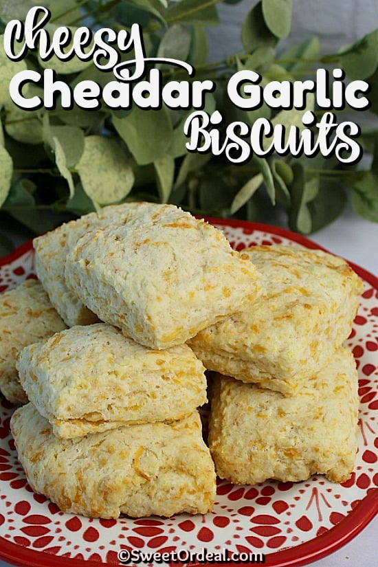 Plate of dinner biscuits.