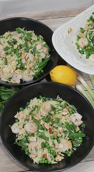 Servings of pasta and shrimp with fresh green onion and lemon.