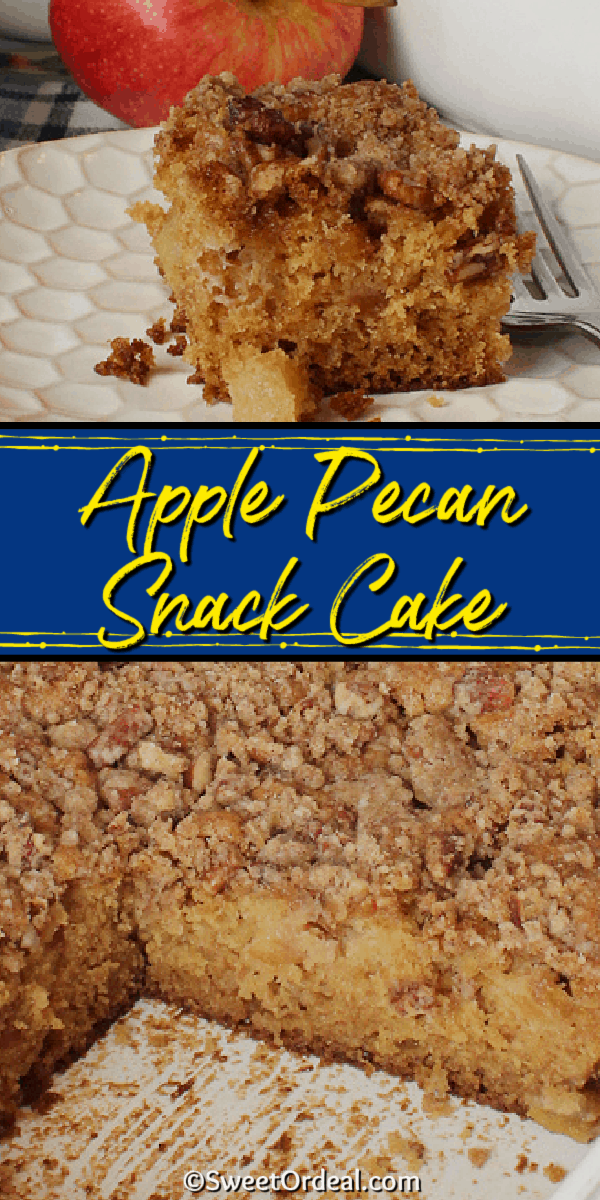 Tender chunks of fresh apple baked into the cake, topped with a crunchy streusel.
