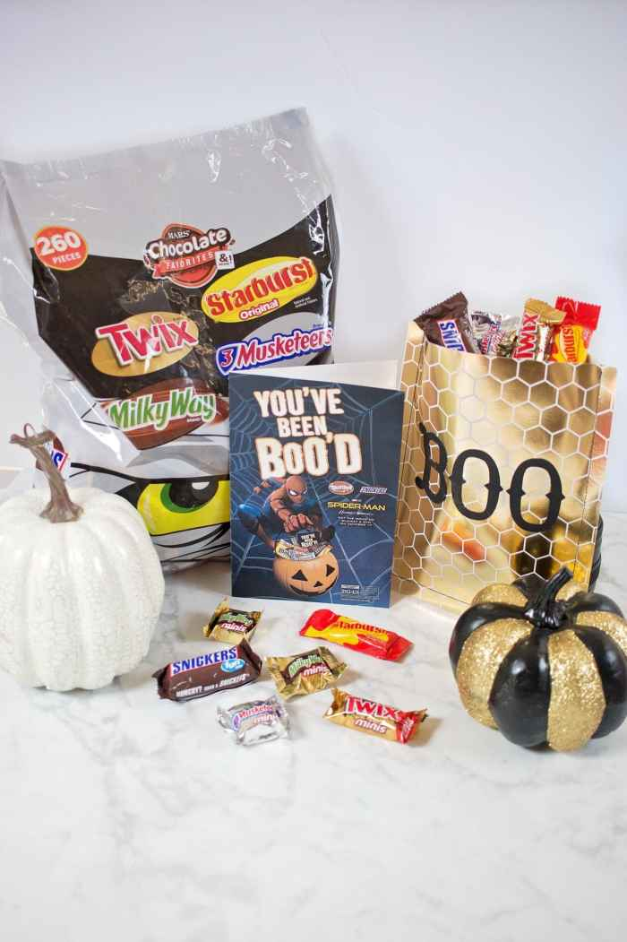 Easy Halloween Candy Gift Bag Sewing Tutorial Mars Candy Boo It Forward