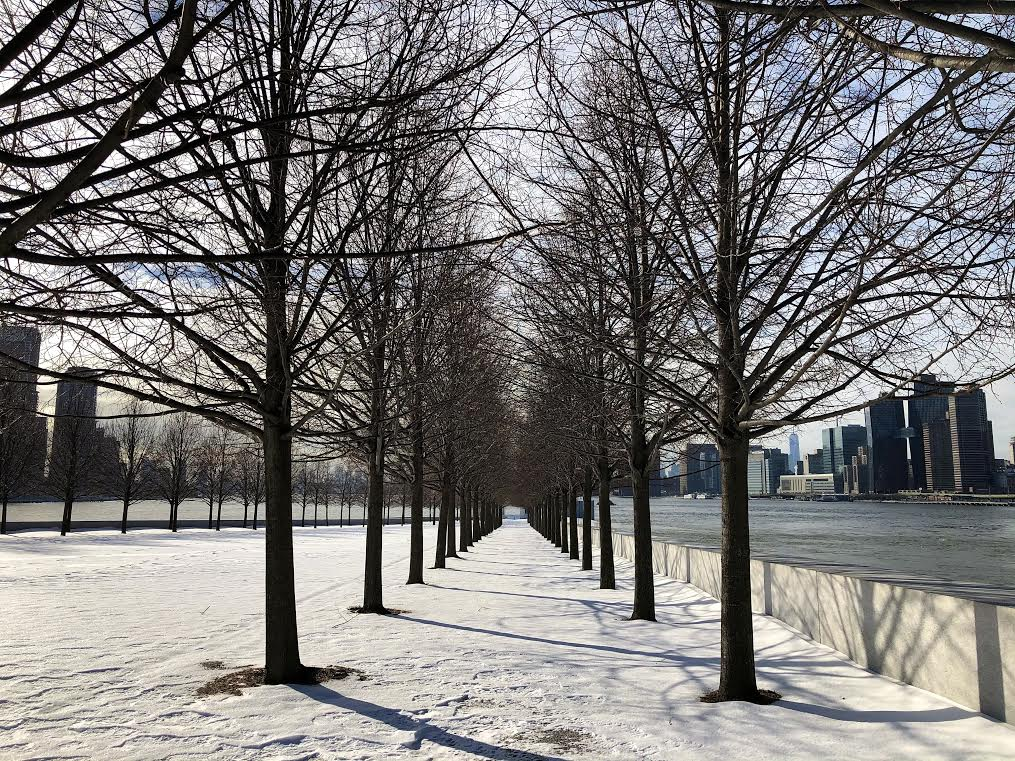 The Gift of Snow: Four Freedoms Park Conservancy