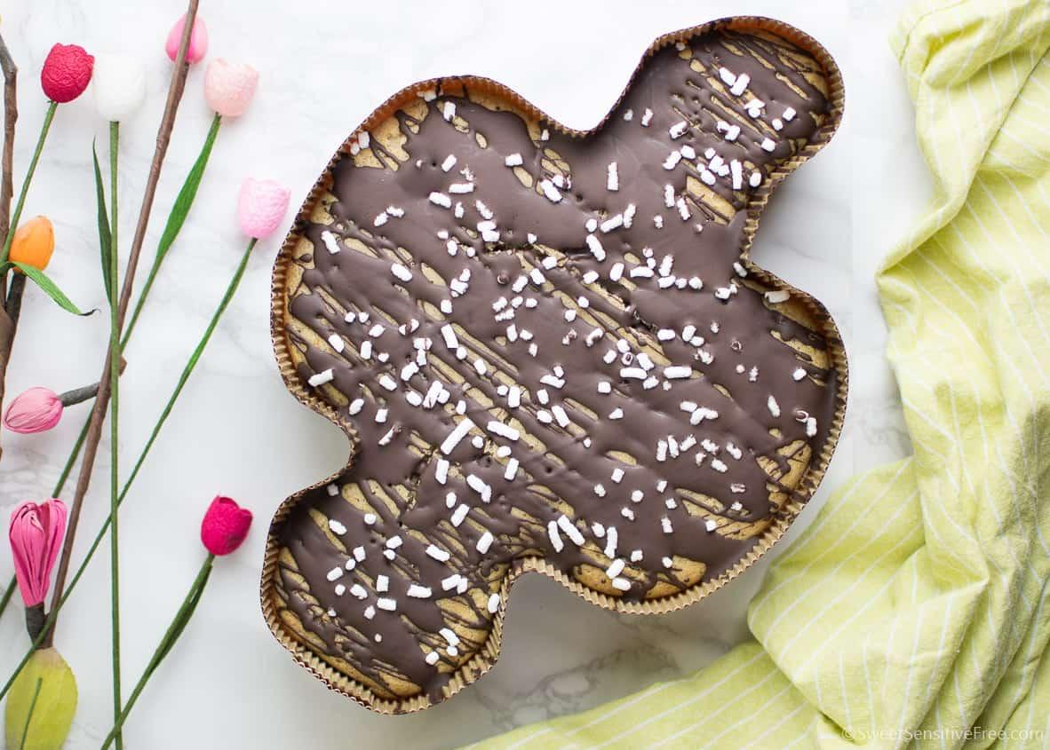 Torta Colomba Veloce al Cioccolato | Senza glutine * Senza lievito * Vegan