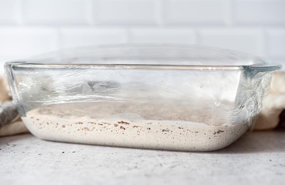 Gluten free long-leavened pizza dough